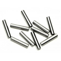 PIN 2x10mm (10pcs)