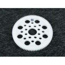 48 Pitch Spur Gear 81T