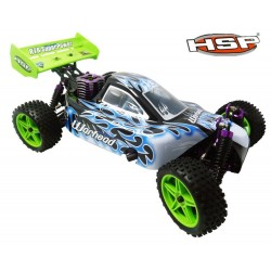 HSP  1/10th Scale Nitro Off Road Buggy-Two Speed  PRO